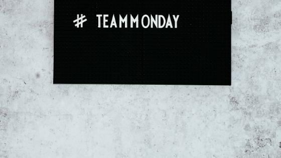 Ibis_Monday
